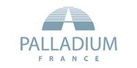 logo palladium france